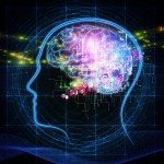 Our Elusive Mind - View of the Mind