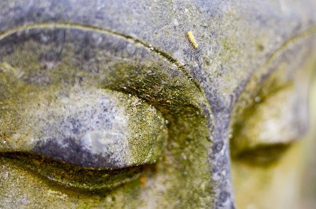 Carl Jung's Exploration of Chakras and Kundalini
